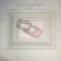 Andanines Pink Shoe